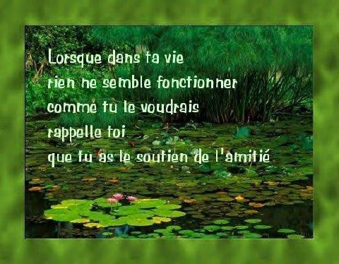 Citation De Soutien Pour Une Amie Webwinkelbundel